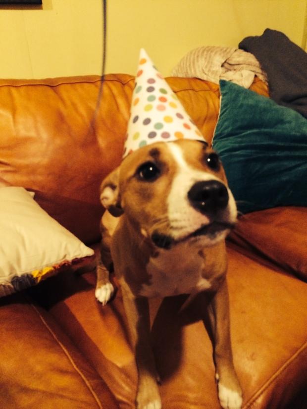 Happy 2nd Birthday Riley!